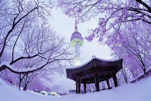 Đông đến tháp Namsan được phủ trong làn tuyết trắng